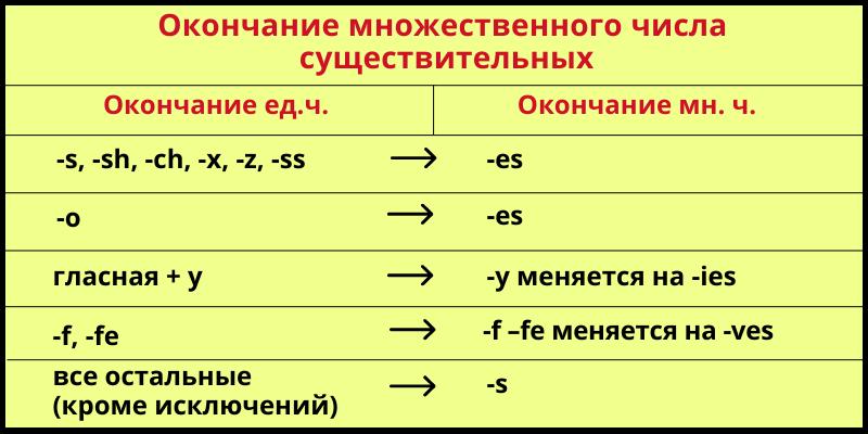 Множественное число существительных